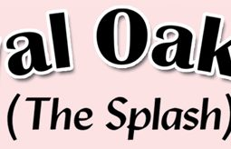 "Royal Oak Inn ""The Splash"""