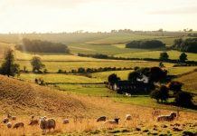 National funding for duo of Lincolnshire countryside projects
